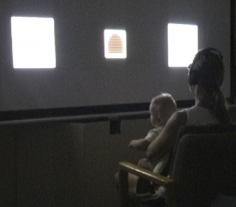 Visual Expectancy Learning task, Cognitive Development Lab, UCSD (Ellis, Robledo Gonzolez & Deak, 2013)